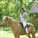о родине на коне