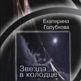 Екатерина Голубкова книга Звезда в колодце