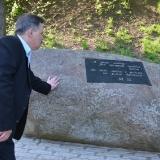 Дубровицы, 17 мая 2014 г.